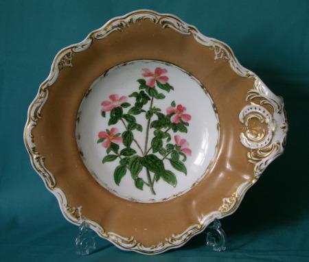 A Copeland & Garrett botanical dish c.1835-40