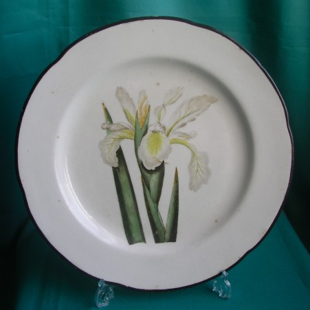 A Derby Botanical Dinner Plate, Pattern 197, c.1800