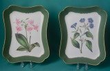 A Pair of Davenport Porcelain Botanical Dishes c.1820