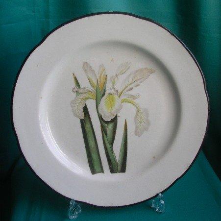 A Derby Botanical Dinner Plate, Pattern 197, c.1800